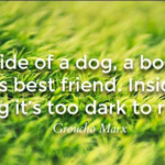 Amazing Quotes by Groucho Marx about Pet