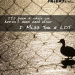 Cute I Miss You Friend Quotes