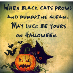 Funny Halloween Quotes Sayings