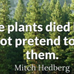 Funny Quotes by Mitch Hedberg