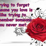 Heart Touching Quotes about Broken Love