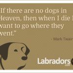 Mark Twain Quotes Dog