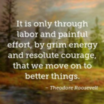 Moving On Quotes by Theodore Roosevelt