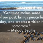 Peace Quotes by Melody Beattie