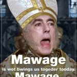 Princess Bride Quotes Mawwiage