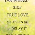 Princess Bride True Love Quotes