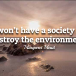 Quotes About Environmental by Margaret Mead