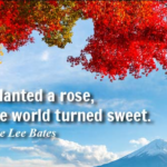 Quotes About Romantic by Katharine Lee Bates