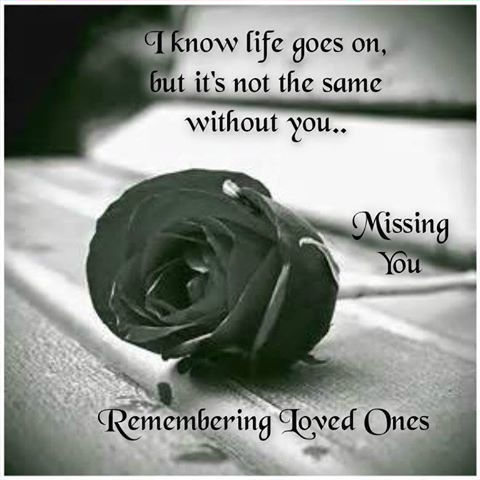 Lost Of Loved Ones Quotes Gorgeous Missing A Lost Loved One Quotes Tumblr  Upload Mega Quotes