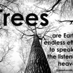 Rabindranath Tagore Quotes About Nature