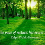 Ralph Waldo Emerson Quotes About Patience