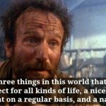 Robin Williams Genie Quotes Digg
