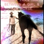 A Girl And Her Horse Quotes Facebook