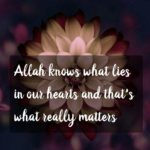 Allah Beautiful Quotes Facebook