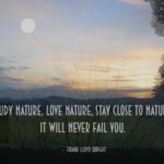 Amazing Quotes by Frank Lloyd Wright about  Nature