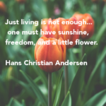 Amazing Quotes by Hans Christian Andersen about Freedom