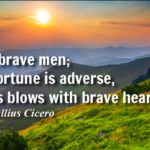 Amazing Quotes by Marcus Tullius Cicero about Veterans Day