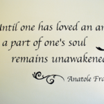 Anatole France Quotes About Pet