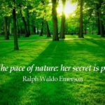 Awesome Quotes by Ralph Waldo Emerson about Nature