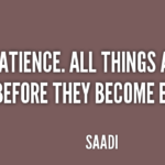 Awesome Quotes by  Saadi about Patience