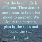 Beach Life Quotes Tumblr