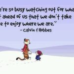 Calvin And Hobbes Sayings Pinterest