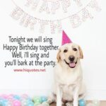 Captions For Dogs Birthday Pinterest