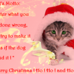 Cat Christmas Quotes Pinterest