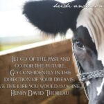 Cattle Quotes And Sayings Facebook