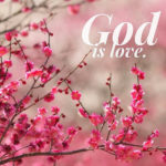 Christian Encouraging Quotes Flickr