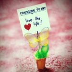 Cute Quotes about Love and Happiness
