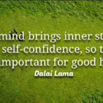 Dalai Lama Quotes About Good