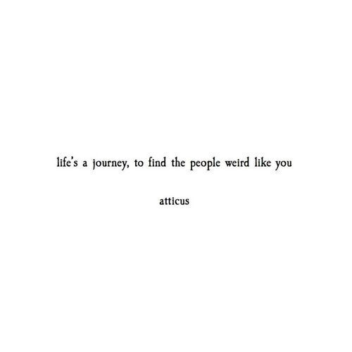 Twitter Love Quotes Love Quotes Collection