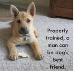 Dog Best Friend Quotes