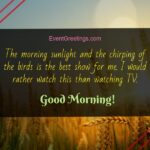 Excellent Good Morning Quotes Tumblr