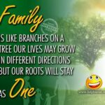 Family Day Quotes And Images Facebook