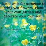 Famous Quotes About Flowers Twitter