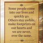 Farewell Invitation Quotes For Seniors Flickr