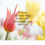 Flower Love Quotes and Sayings