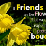 Flower Quotes about Friendship