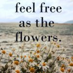 Flower Quotes about Life