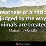 Ghandi Quote About Animals Twitter