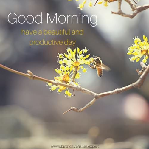Good Morning Wishes With Scenery Facebook
