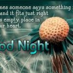 Goodnight Quotes For Facebook