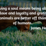 Great Quotes about Pet