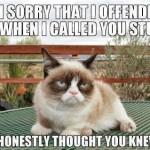 Grumpy Cat Halloween Quotes