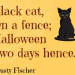 Halloween Black Cat Sayings