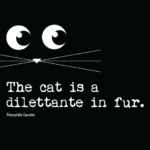 Halloween Cat Sayings