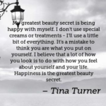 Happiness Quotes by Tina Turner