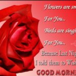 Good Morning Wishes With Rose Flowers